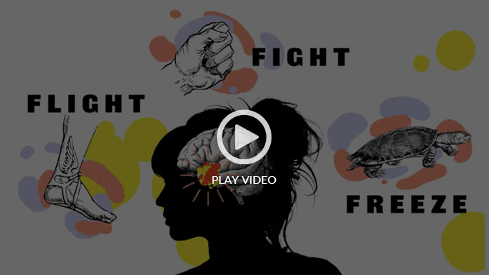 Fight, Flight, Freeze- Anxiety Explained for Teens